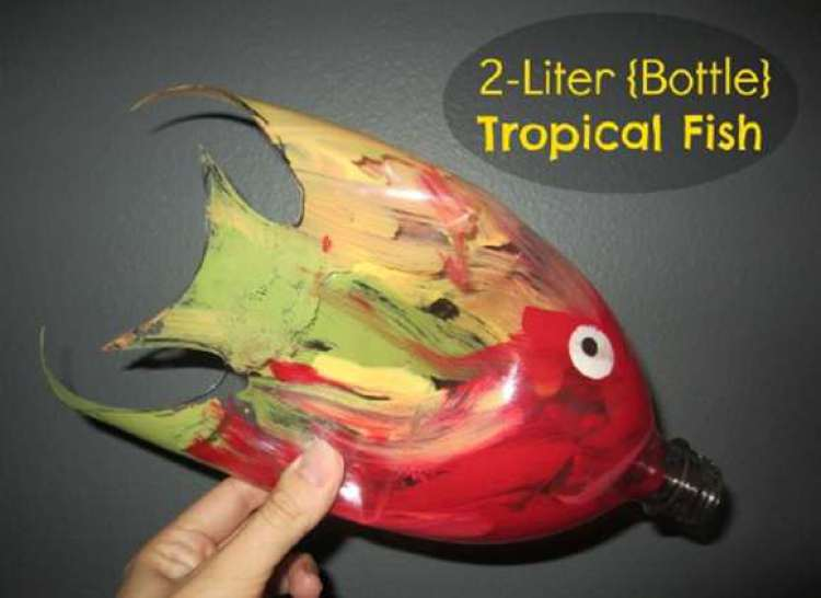 Tropical Fish creation of Bottles