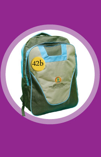 S B Tas Backpack Dinas