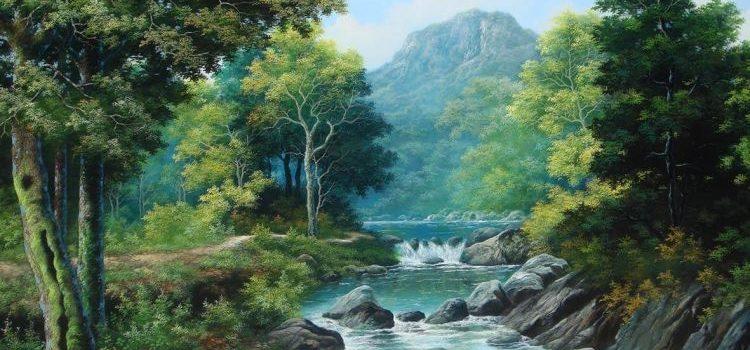 13 Manfaat Hutan Yang Wajib Kamu Ketahui